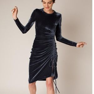 Rachel Antonoff Velvet Flora Ruched Midi Dress